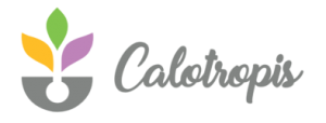 Calotropis Software Solutions Pvt Ltd